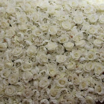 White flower wall hire Melbourne